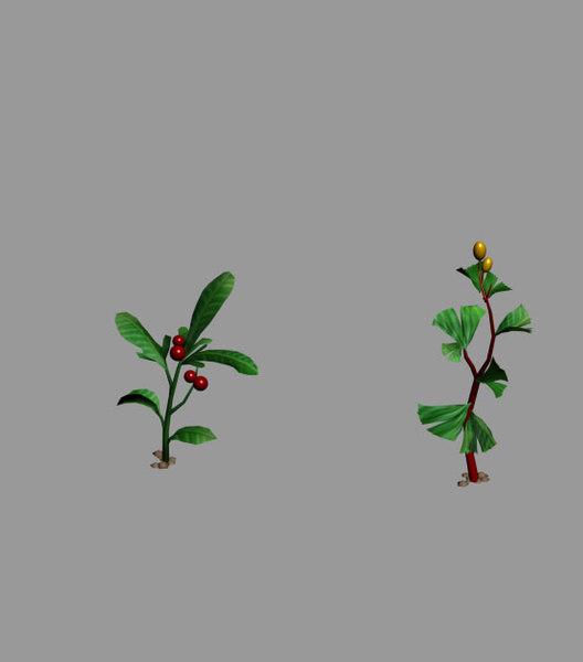 herbal medicine 3D model