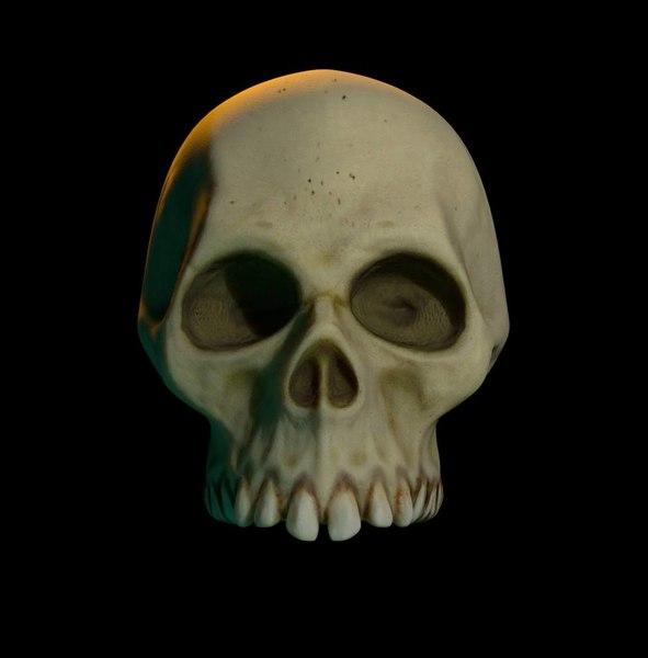 3D simple skull model