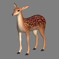 3D fawn modeled model