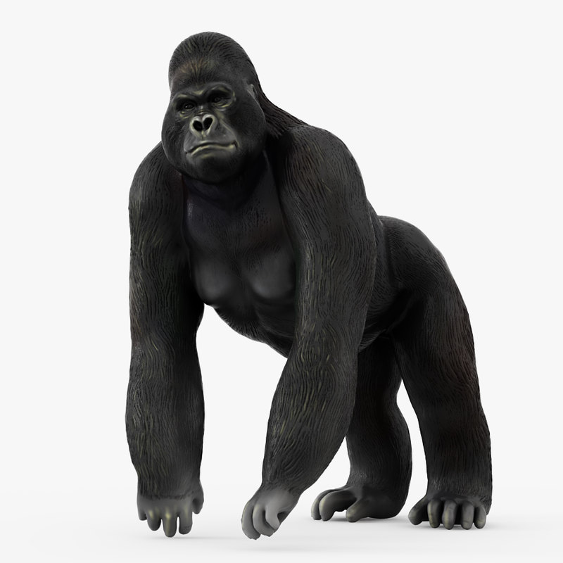 figurine gorilla 3D