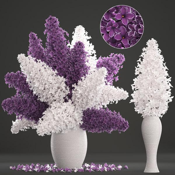 bouquet lilac 3D