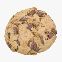 realistic chocolate chip cookie 3D model