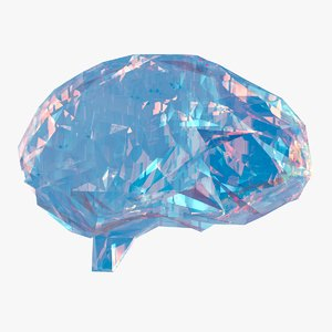 3D model art brain