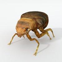flea 3D