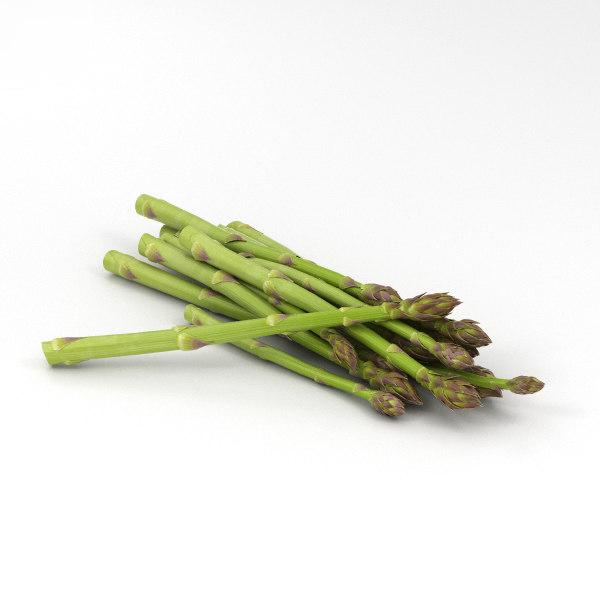 3D asparagus vegetable food model