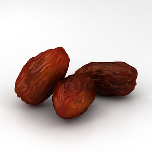 3D model dried dates
