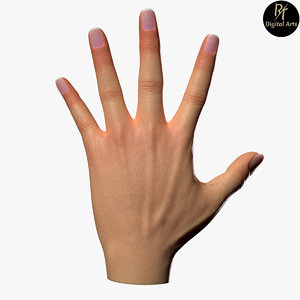 female hands model