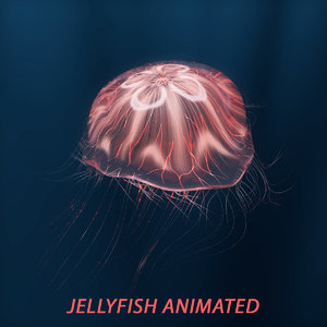 jellyfish animations 3D