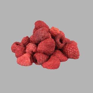 3D berries raspberries