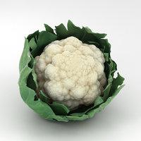 3D cauliflower vegetable food