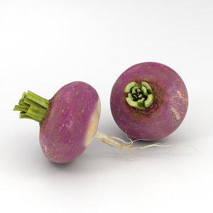 turnip vegetable food 3D model