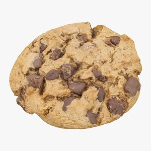 3D realistic chocolate chip cookie model