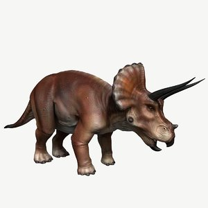 3d model triceratops