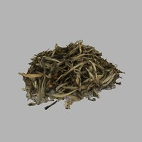 3D model tea leaves white