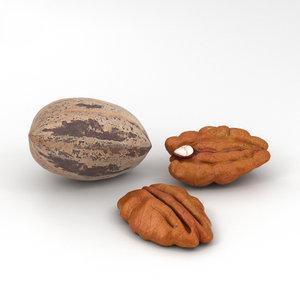 3D pecan nuts model
