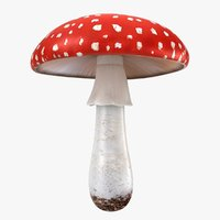 realistic mushrooms amanita 01 3D model