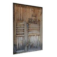 3D old door scan
