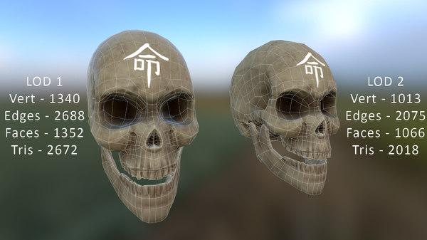 3D human skull lods