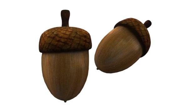 acorn 3D model