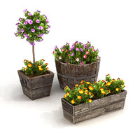 Potted Plants Bundle 1A
