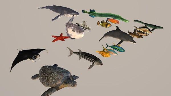 pack fish games turtle 3D model