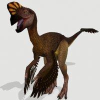 3D model oviraptor lizard dinosaurs