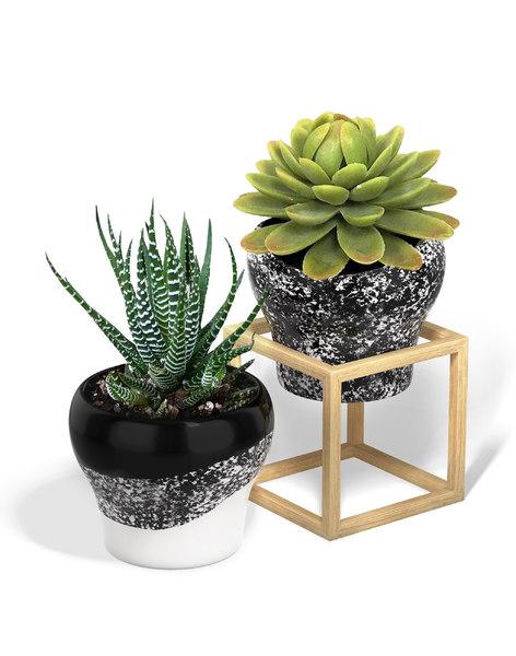 flower pot wood cube 3D