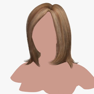 hairstyle 14 hair 3D model