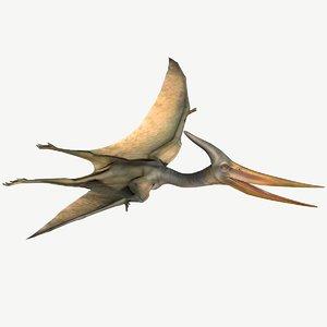 pteranodon 3D model