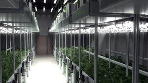 3D cannabis grow room model