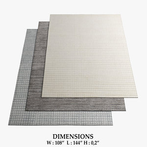3D rugs 81 model