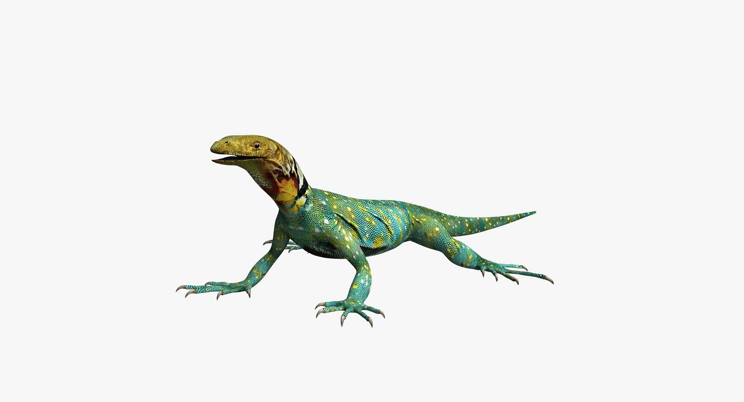 3D lizard reptiles animals