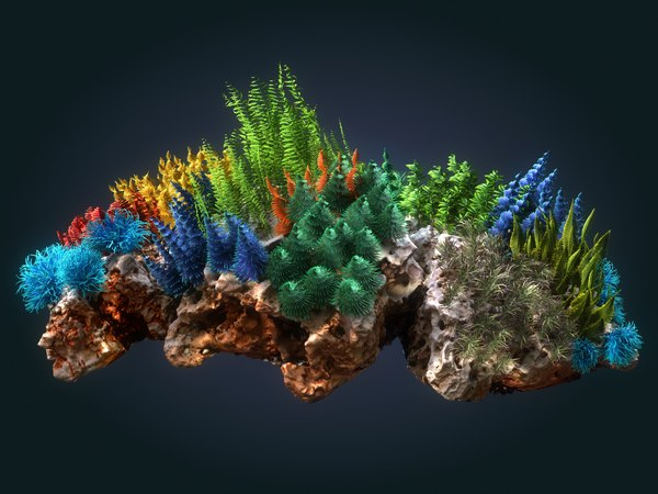 coral reef ecosystem plants 3D