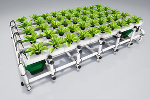 hydroponics 3D model