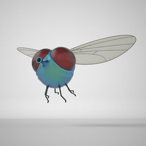 cartoon fly 3D