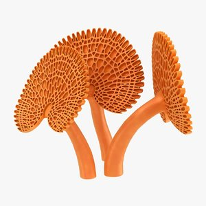 realistic orange pore fungus 3D model