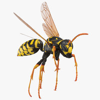 3D paper wasp flying