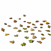 Leafs on the ground 01