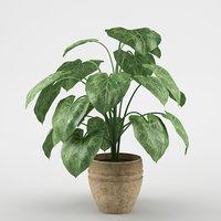 3dsmax plant flowerpot max8