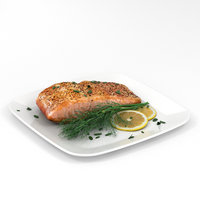 3D salmon fillet cook model