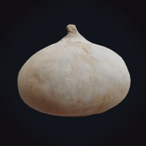 onion realistic pbr 3D