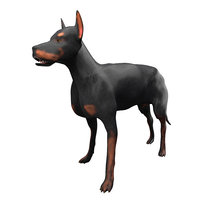 3D dog doberman animal