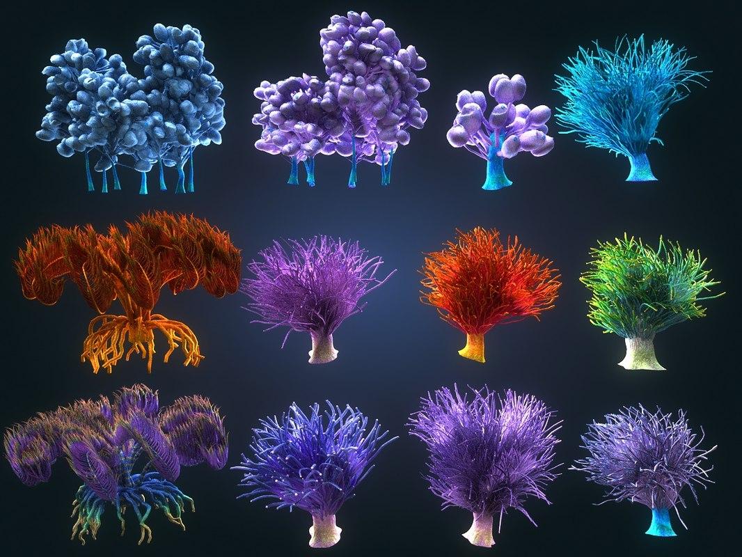 3D coral reef plants -