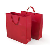 Paper Carry Retail Gift Bags