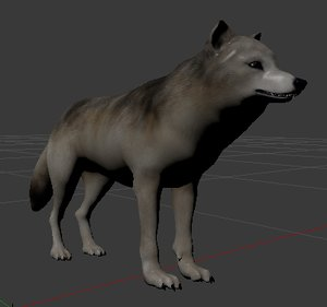 3D model realistic grey wolf