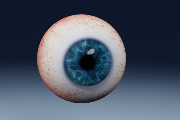 photorealistic human eye 3D model
