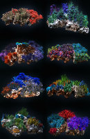 Coral reef ecosystem Animated Pack 8