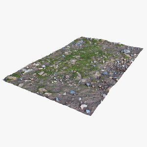 3D mossy ground