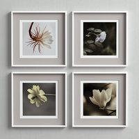 picture frames set 3D
