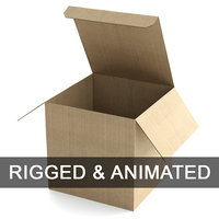Cardboard Box 195x195cm - Rigged and Animated